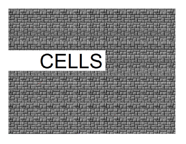 Cells by Group Two