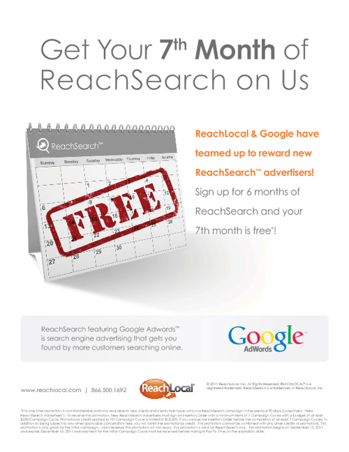 Google & ReachLocal Adwords Promotion 2011