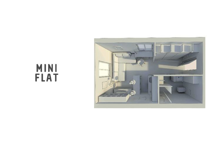 Mini Flat