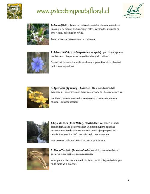 Descripción Esencias Florales - www.psicoterapeutafloral.cl