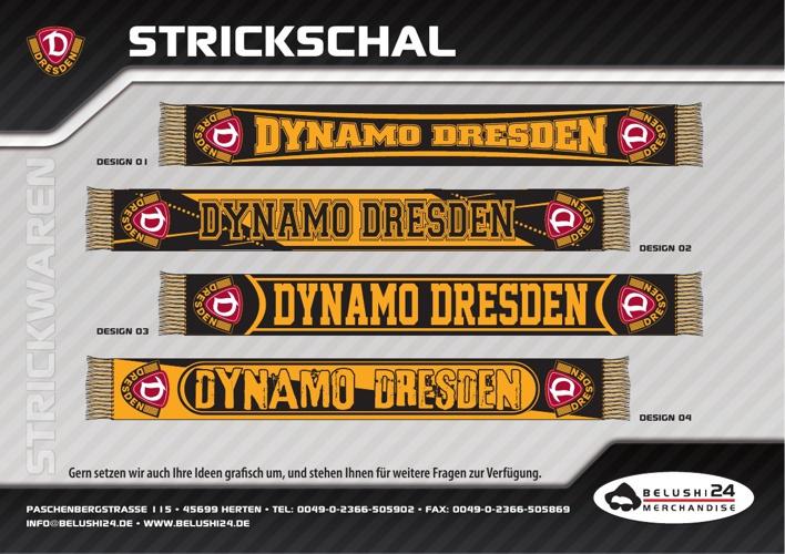 Dynamo Dresden Sommer 2013