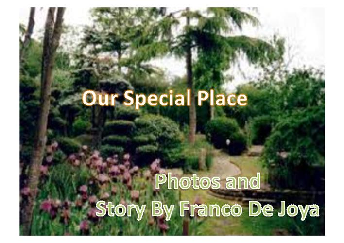 12De Joya_ Our Special Place