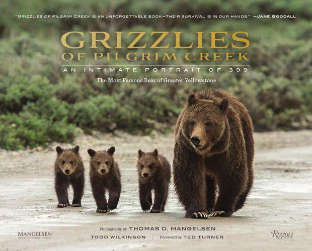 Grizzlies of Pilgrim Creek: An Intimate Portrait of 399