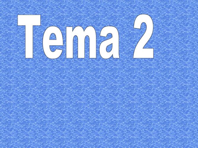 pantallazos de matematica tema 2