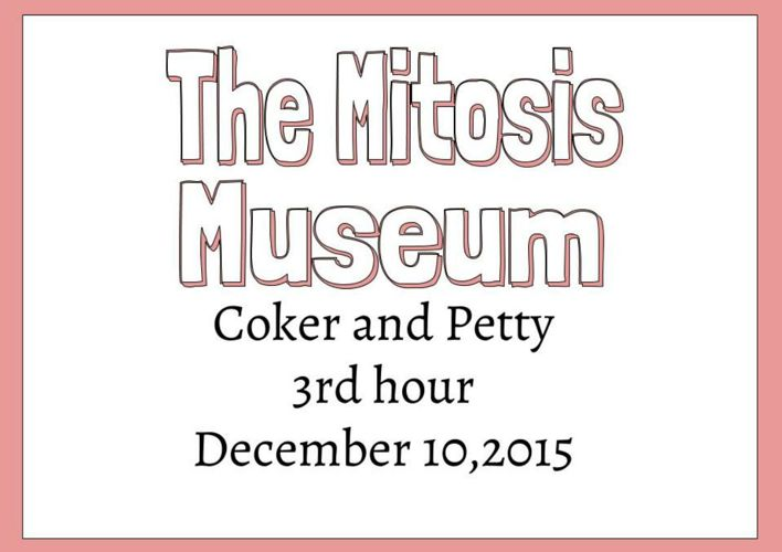 The Mitosis Museum
