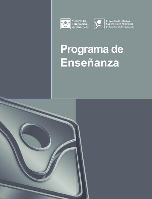 Programa de Enseñanza CIJ