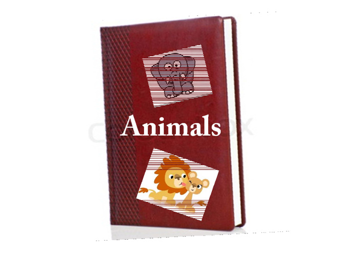 Demi's Animals book