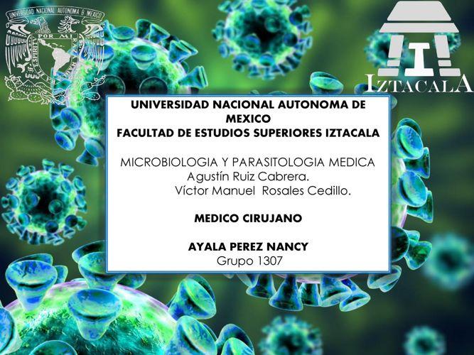Virus de importancia medica.