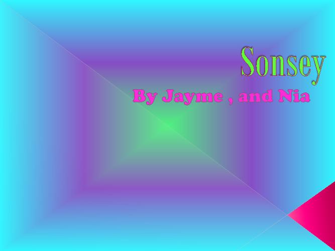 Sonsey