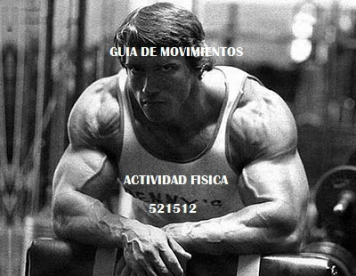Guia de movimientos Actividad fisica