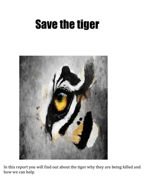 Microsoft Word - Save the tiger SETH
