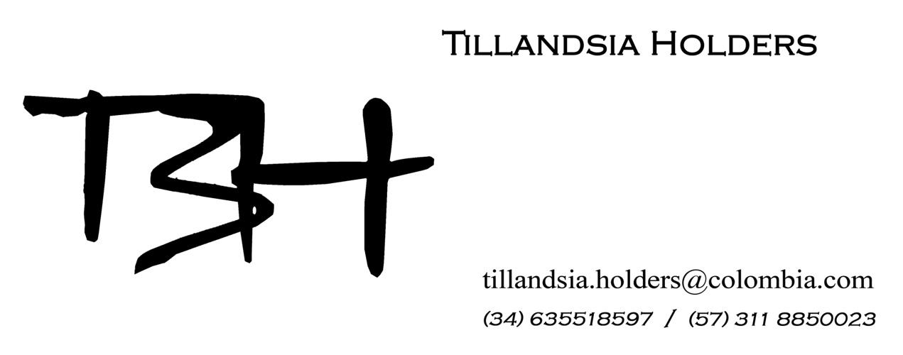 Tillandsia Holders