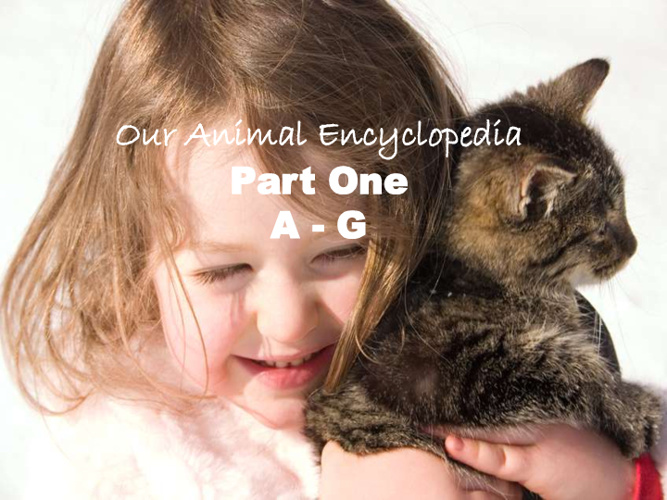 Our Animal Encyclopedia Part One A-G