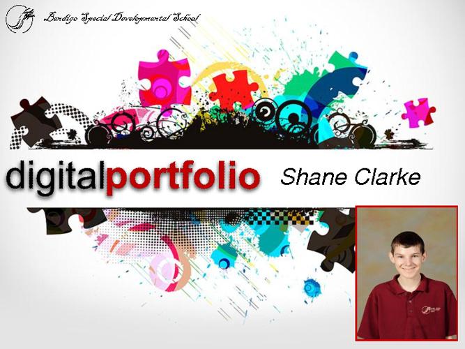 Shane's 2012 Portfolio