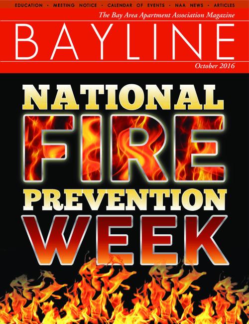 Bayline October 2016