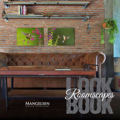 Roomscapes Look Book