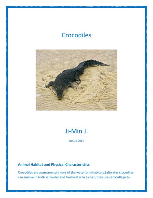 Amazing Crocodiles