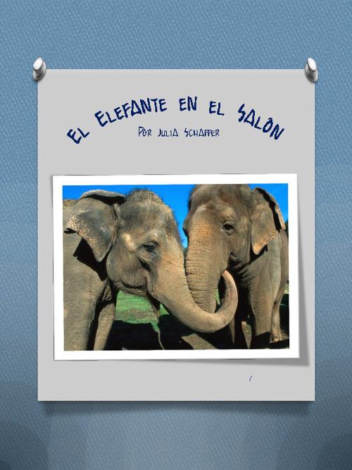 EL ELEFANTE EN EL SALÓN