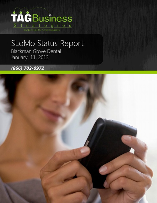 BGD Status Report 20130111