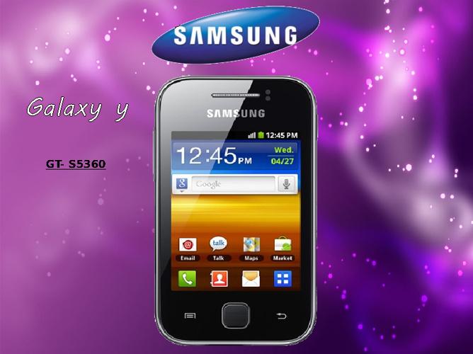 Manual Samsung Galaxy Y
