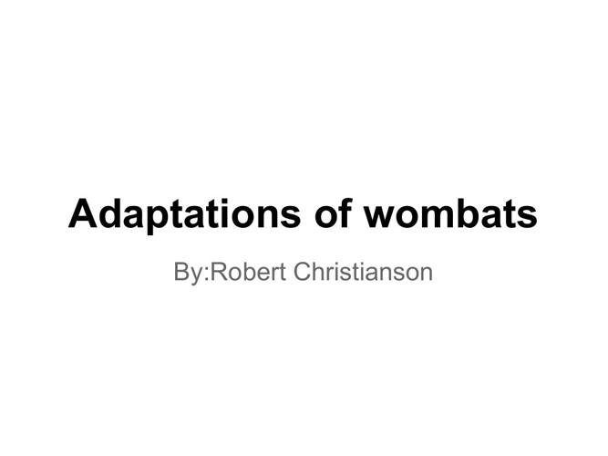 wombats adaaptation