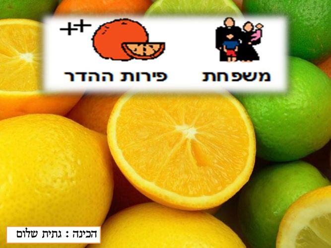 משפחת פירות ההדר