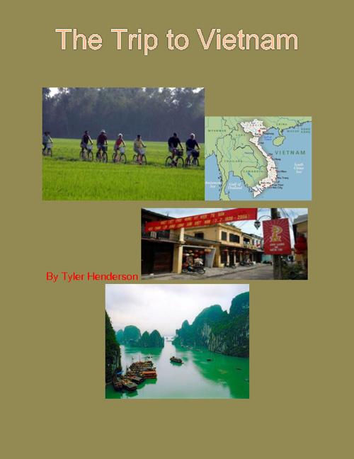 The Trip to Vietnam
