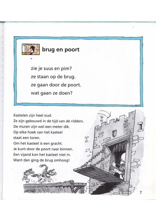 Het kasteel leesboek groep 3