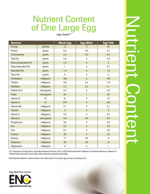 Copy of nutrient-content-large-egg