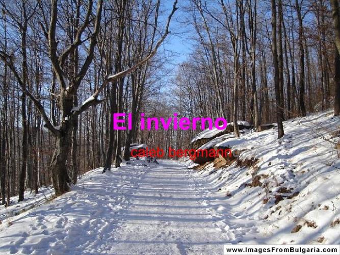 el invierno caleb bergmann p2