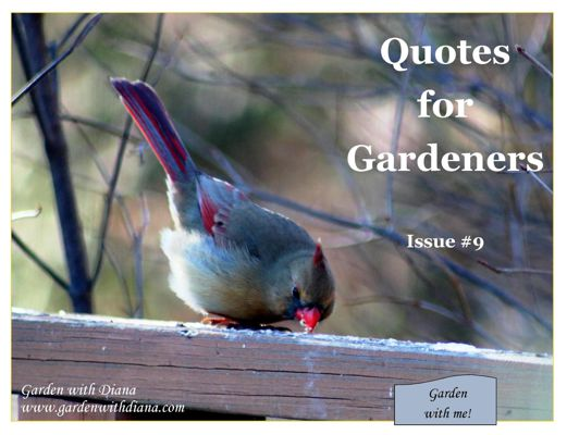 Quotes for Gardeners - Winter - Issue #9