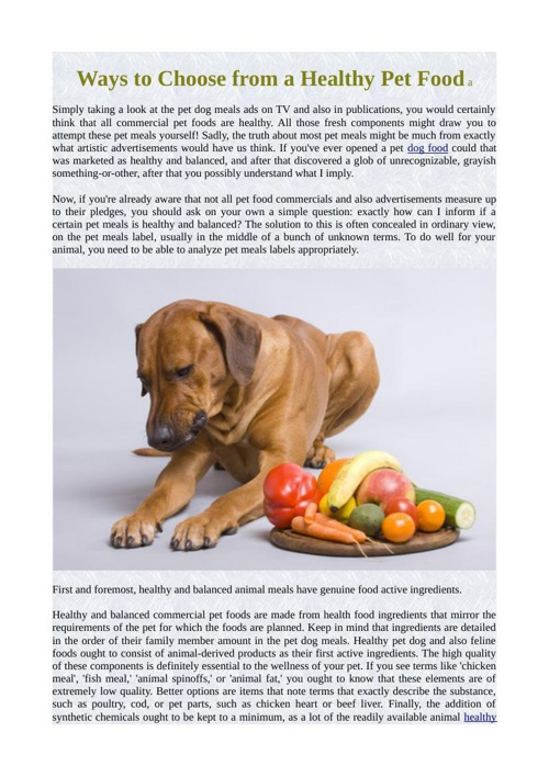 Ways to Choose from a Healthy Pet Food