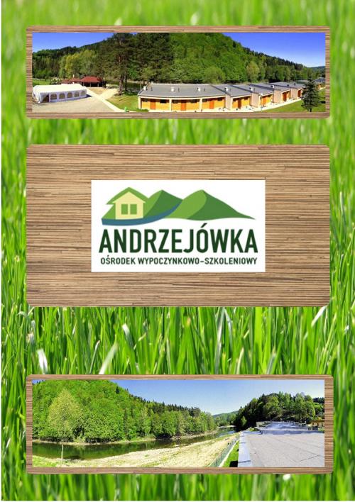 Andrzejowka 2011
