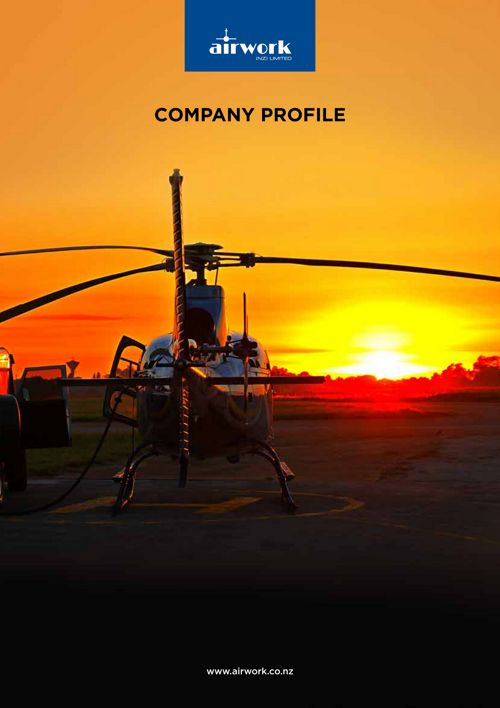 J16309 Airwork Company Profile Condensed