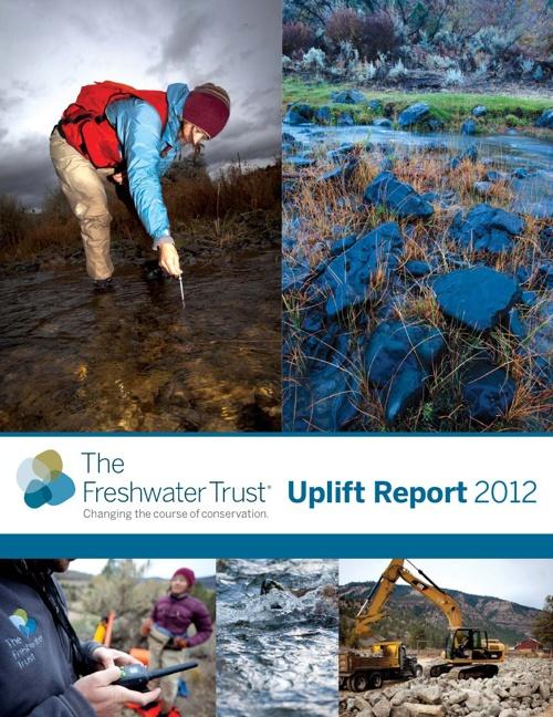 2012 Uplift Report