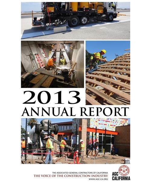 AGC 2013 Annual Report
