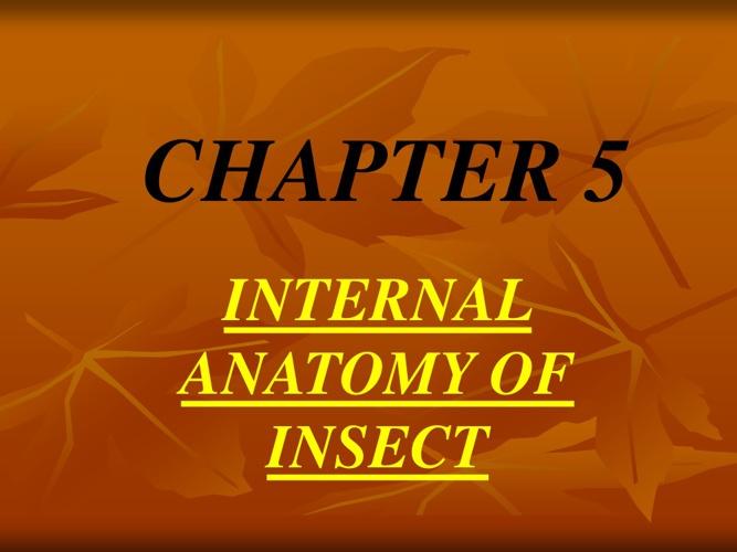 ENTOMOLOGY - Chapter 5