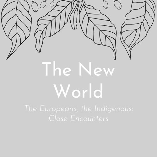 The Indigenous in the New World