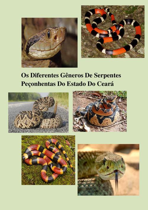 Cartilha Cobras Venenosas