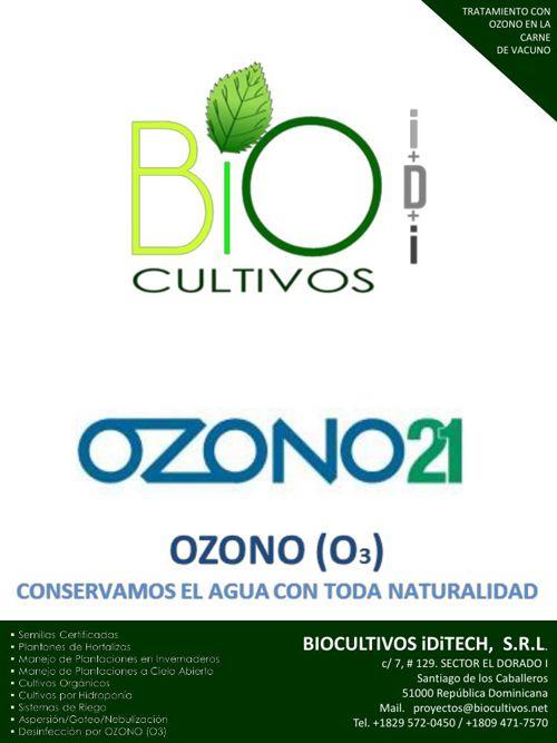 INFORME TRATAMIENTO CON OZONO DE LA CARNE DE VACUNO