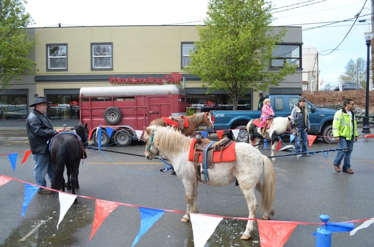 Skagit Tulip Festival - Downtown Mount Vernon Street Fair