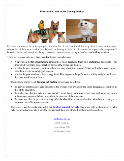 Uncover The Truth Of Pet Healing Services