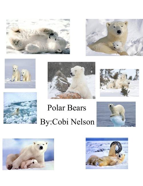 CobisInformationalBook
