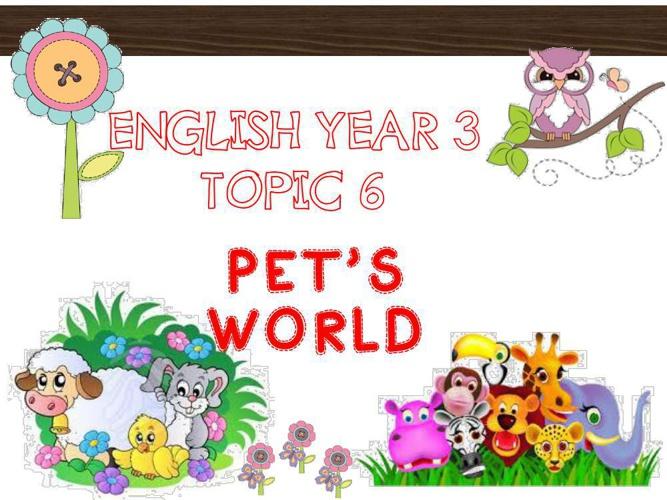 pet's world