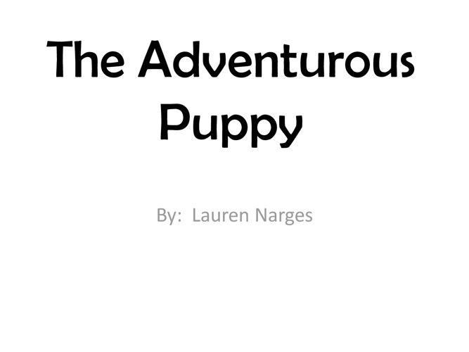 The Adventurous Puppy