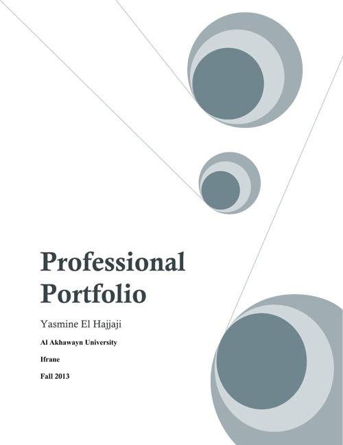 Professional Porfolio