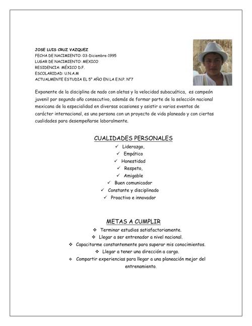 curriculum 2013 enero