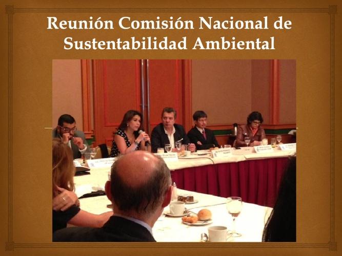 Noticia sobre la Sustentabilidad Ambiental