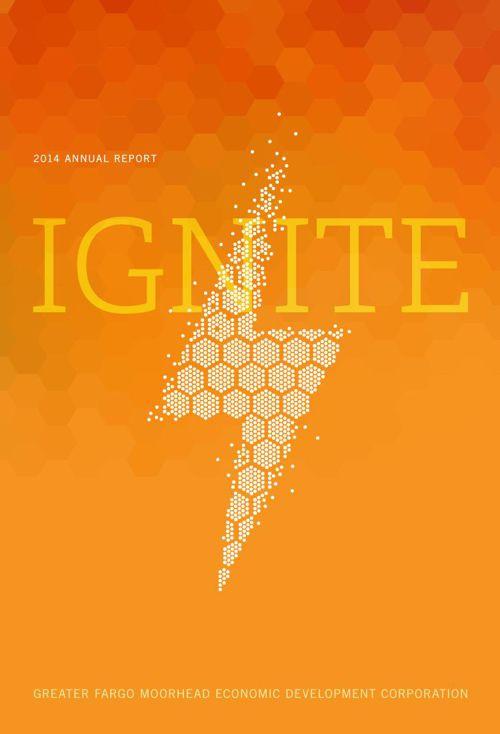 GFMEDC 2014 annual report Final