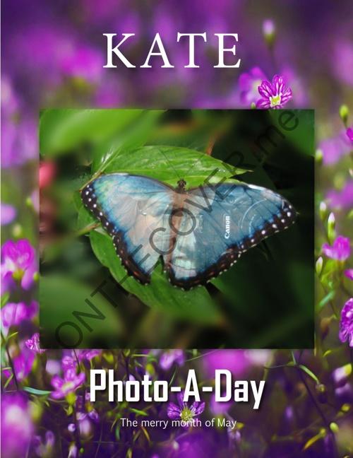 Kate Photo-A-Day May DRAFT